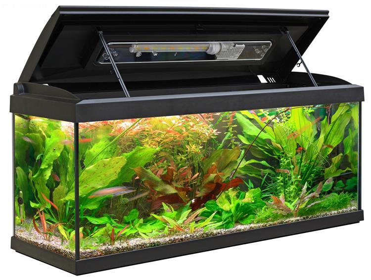Vendita acquari mtb milo 100 ledline new piranha acquari for Acquario completo prezzi